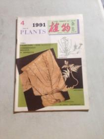 植物杂志1991.4