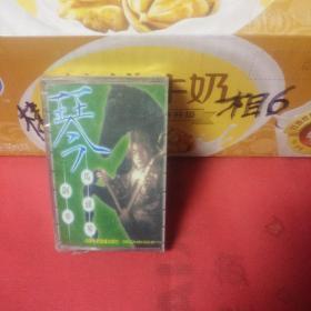 未开封磁带:琴(马头琴/钢琴)