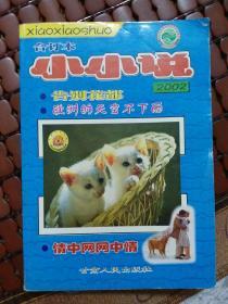 小小说合订本2002