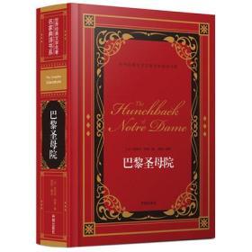 巴黎圣母院/世界经典文学名著名家典译书系