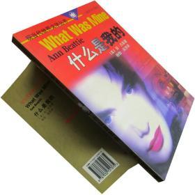 什么是我的 安·贝蒂 现当代世界文学丛书 书籍