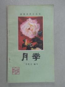 盆栽花卉小丛书:月季