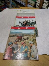 朝鲜画报 1974年 第8.11期加一增刊。3本合售
