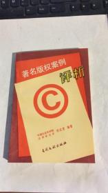 著名版权案例评析