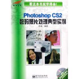 Photoshop CS2数码照片处理典型实例