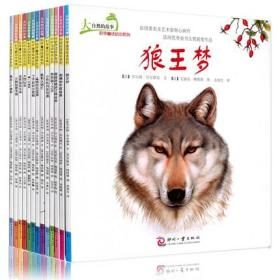 大自然的故事 科学童话绘本系列 全套十三本