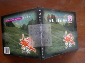 ling山野花/徐凤翔等++