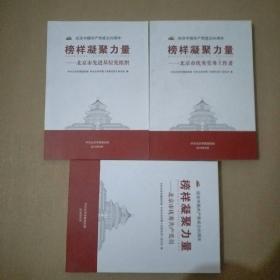 榜样凝聚力量——北京市先进基层党组织、北京市优秀共产党员 北京市优秀党务工作者 【三本合售】.