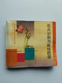 花卉识别与栽培图册
