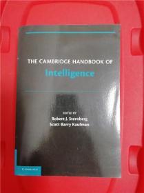 The Cambridge Handbook of Intelligence (剑桥智力研究指南)