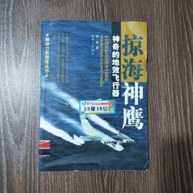 掠海神鹰:神奇的地效飞行器