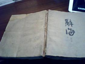 辞海(试行本) 第一分册 语词 (上集)