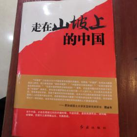 走在山坡上的中国:中国趋势中国梦
