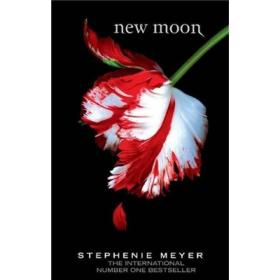 New Moon:MOON B