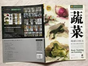 造型基础训练方法丛书:色彩静物·蔬菜局部训练法(无光盘)
