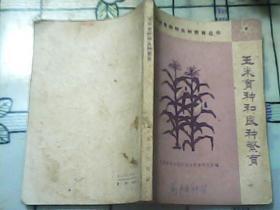 玉米育种和良种繁育——作物育种和良种繁育丛书