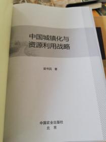 中国城镇化与资源利用战略