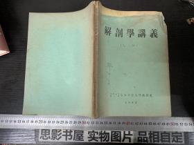 解剖学讲义【1953年老版】