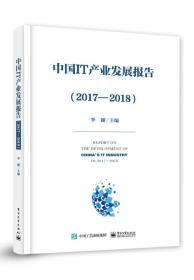 中国IT产业发展报告(2107-2018)