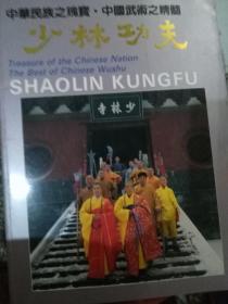 中国武术之瑰宝--少林功夫