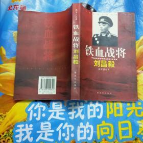 铁血战将·刘昌毅