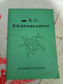 山茶花繁殖管理和主要品种识别