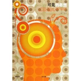 可见的思想:视觉文化研究丛书