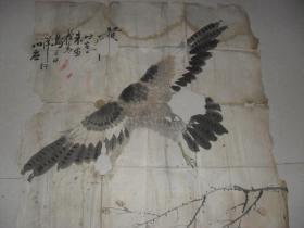 民国时期青岛地方名家写意大鹰一张