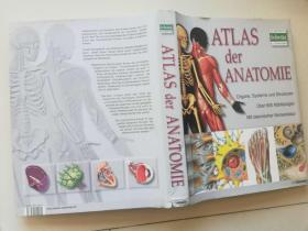ATLAS  DER  ANATOMIE【书脊有破损】
