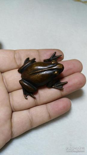 收钱币收的  文房雅玩   紫铜小 青 蛙