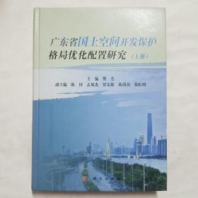 广东省国土空间开发保护格局优化配置研究(上册)
