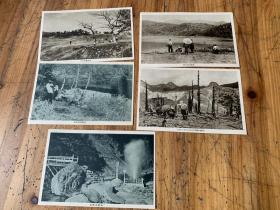 3970:早期日本明信片《志贺高原长池 白根山的残雪 地狱谷喷泉 志贺高原丸池  》等5张