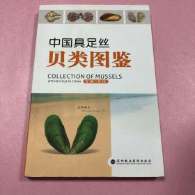 中国具足丝贝类图鉴