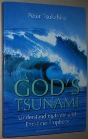英文原版书 Gods Tsunami: Understanding Israel and End-Time Prophecy