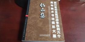 四川省纪念抗日战争胜利六十周年美术书法摄影大展作品集