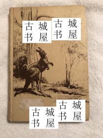 古籍,《袋鼠的生活》 C. Gifford Ambler插图版,1967年出版,精装
