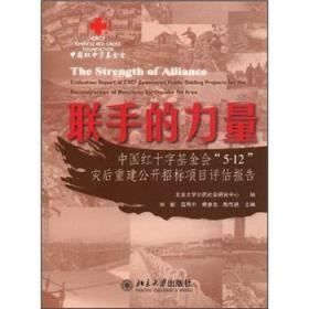联手的力量·中国红十字基金会5.12灾后重建公开招标项目评估报告
