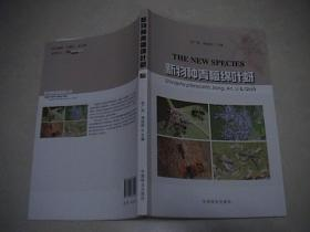 新物种青檀绵叶蚜