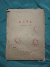 棉花害虫挂图 (2开3张1套 外加一本说明书)1963年第一版,1965年2版3印