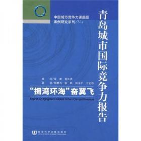 青岛城市国际竞争力报告:拥湾环海奋翼飞