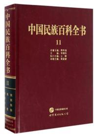 中国民族百科全书11