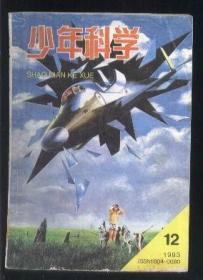 少年科学(1993年第12期)