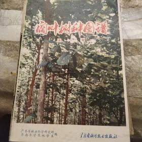 阔叶树钟图谱第一辑