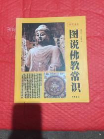 图说佛教常识:视觉历史