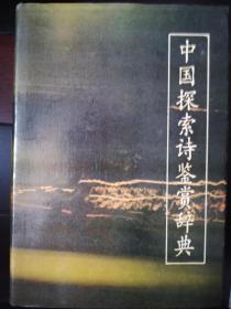 中国探索诗鉴赏辞典