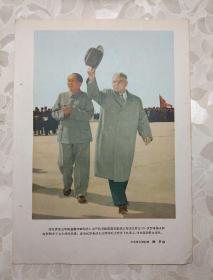 16开插图散页:伏罗希洛夫主席和毛主席在飞机场上,向欢迎的群众招手(中国青年报记者、铁矛)     文件夹009
