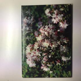 高山花卉明信片