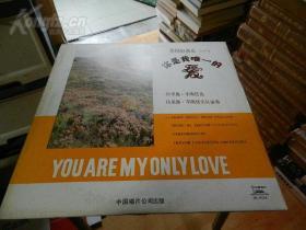 黑胶唱片 英国轻音乐(一)你是我唯一的爱