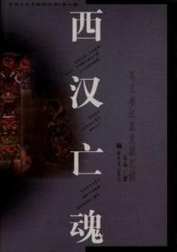 中国文化史探秘丛书(第二辑)-西汉亡魂