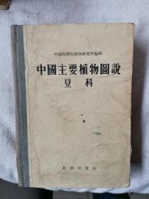 中国主要植物图说 豆科